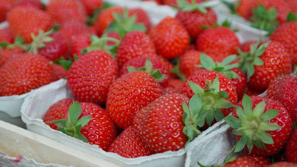 Frische Erdbeeren vom Markt