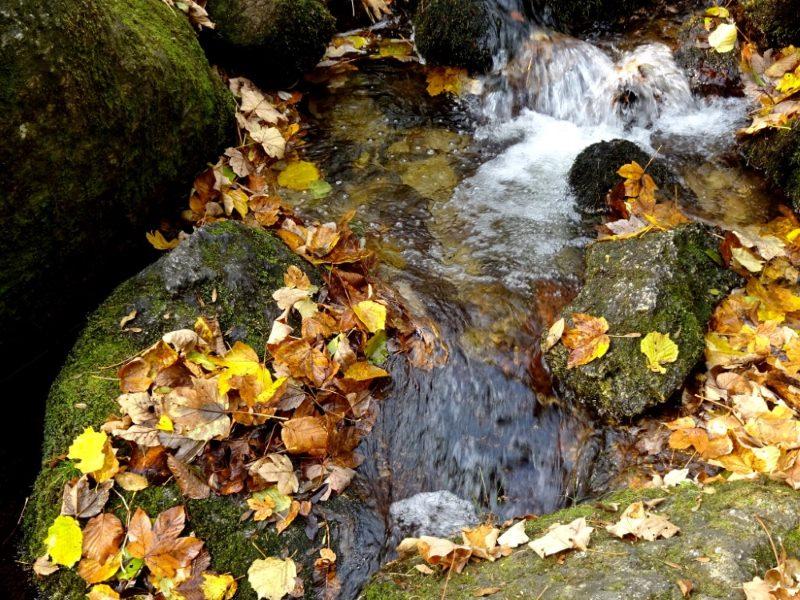 Ysperklamm Herbstwanderung